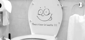 Quelle cuvette de WC choisir ?